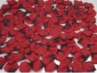 1000 Black Wine Rose Petals ~ WEDDING DECORATION ~